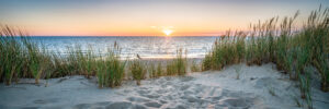 Things to do on Isle Of Palms